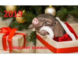 Новогодняя распродажа 2018/2019г