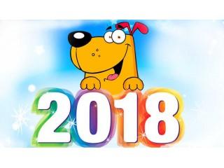 Новогодняя скидка 2017/2018 !